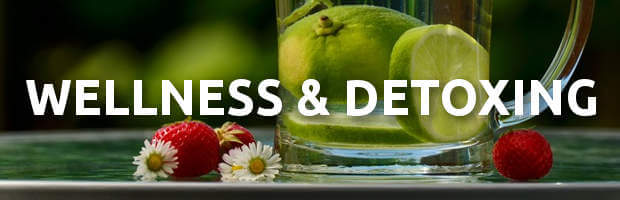 wellness and detoxing ebooks