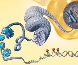 epigenetic studies