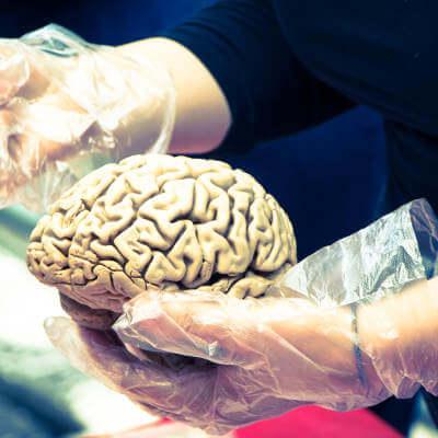 Meditation builds brain cells, Harvard study shows proof