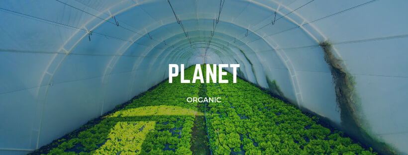 Organic foods for our daily nutrition
