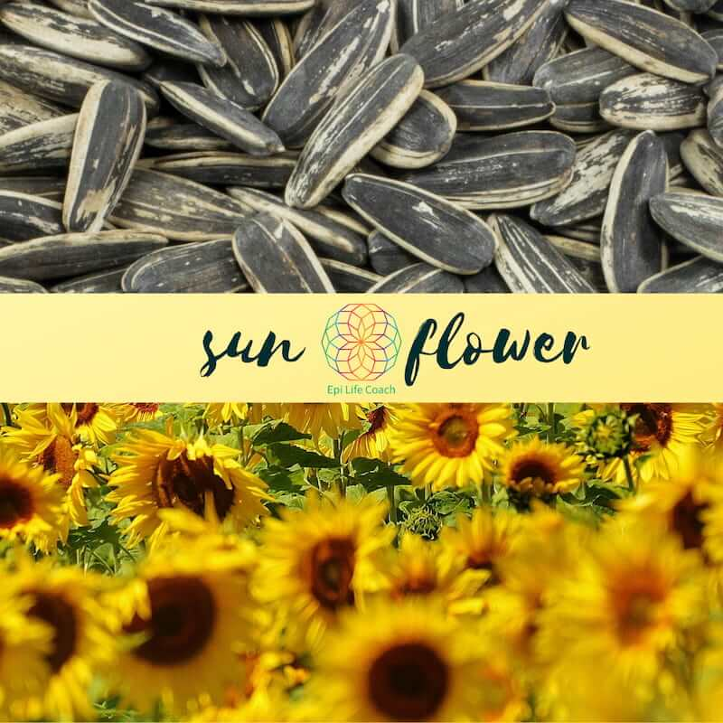 Sunflower seeds can be one of the healthiest snacks you can have